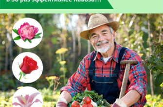 Костная мука как удобрение: химический состав, критерии выбора и рекомендации по использованию в растениеводстве