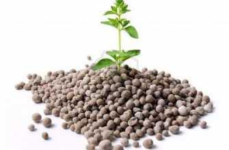 Азотные удобрения и их применение