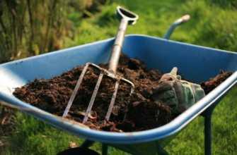Органические удобрения: виды, применение и способы приготовления